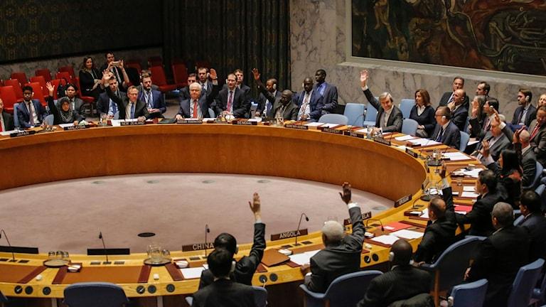 FN:s säkerhetsråd röstar om den av Ryssland och Turkiet framförhandlade vapenvilan i Syrien