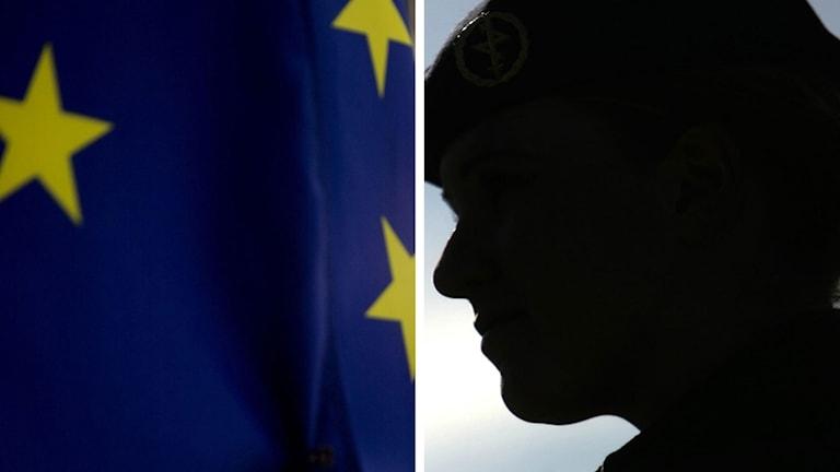 EU flagga visselblåsare