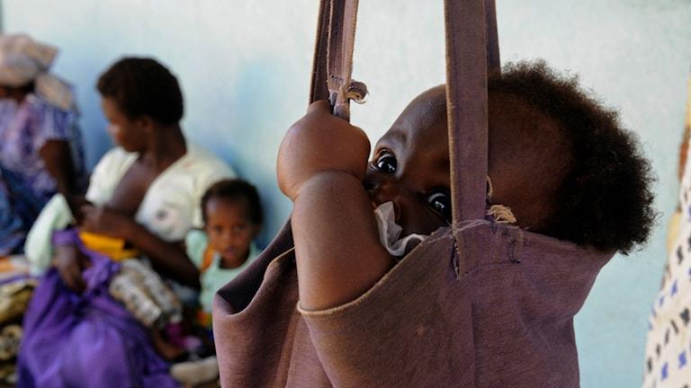 821 miljoner är undernärda globalt enligt ny FN-rapport.