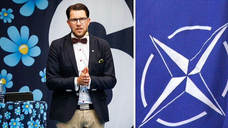 Sweden Democrat leader Jimmie Åkesson will not support the Left Party attempt to delay the Nato vote. Photo: TT