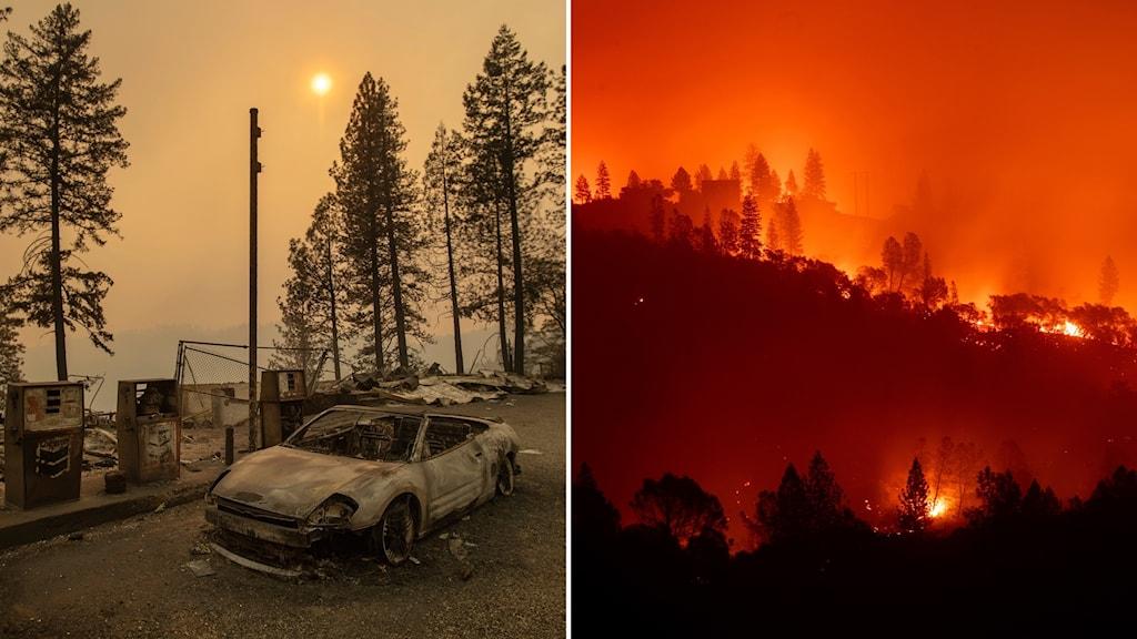 Bränder i Kalifornien