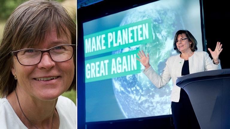 Karin Pleijel MP kräver hårdare tag mot utbrytarna i riksdagen