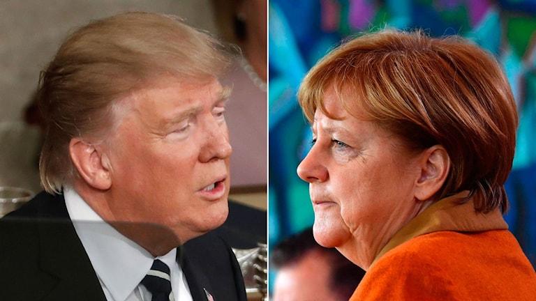 USA:s president Donald Trump till vänster. Tysklands förbundskansler Angela Merkel till höger.
