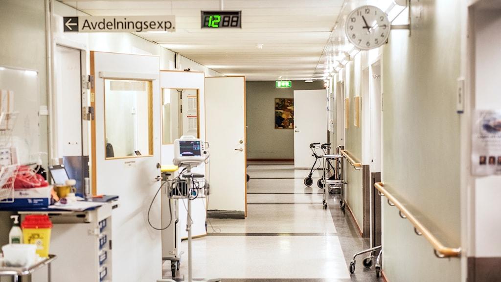 en tom sjukhuskorridor.
