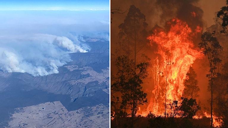 Omfattande bränder i Australien.