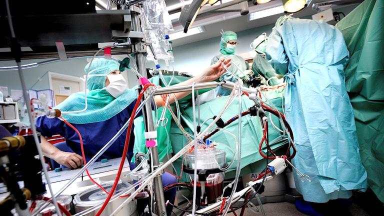 Kirurgi, vård, sjukhus, läkare