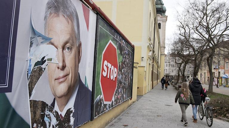 Premiärminister Viktor Orbán på valaffischer.