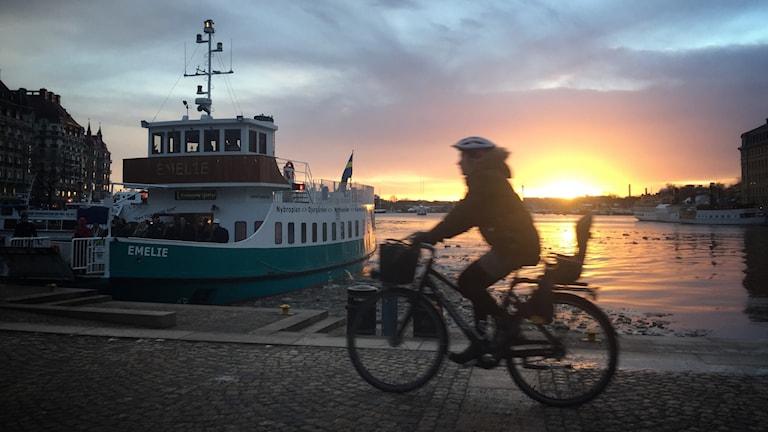 cyklist cykel cykelbanor stockholm