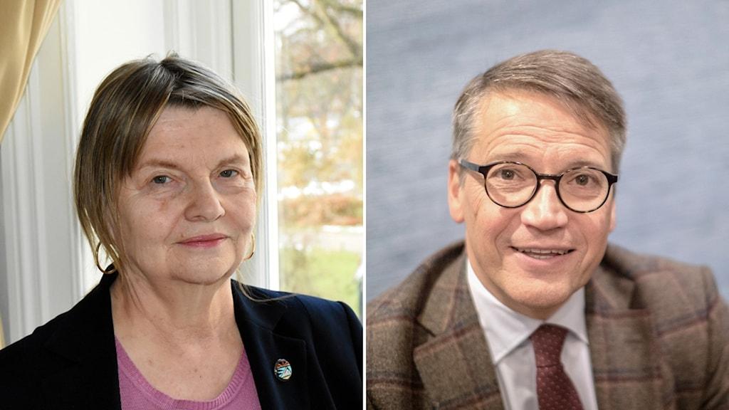Statsvetaren Marja Lemne och före detta kristdemokratiska partiledaren Göran Hägglund.
