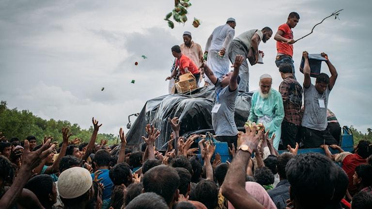 Foto: Adib Chowdhury/TT.