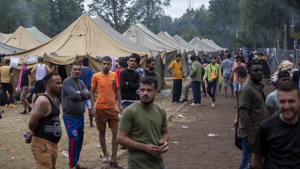 Flyktingar vid Litauens gräns