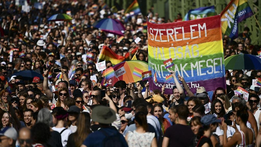 Tusentals personer i demonstrationer under Budapest Pride 2021.