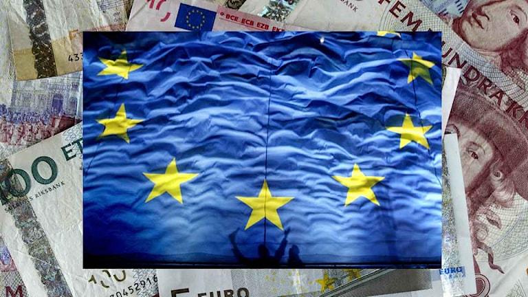 En EU-flagga på en massa sedlar.