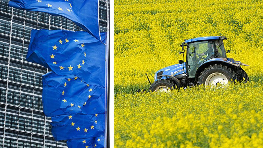 Kollage av EU-flaggor och en traktor på ett rapsfält.