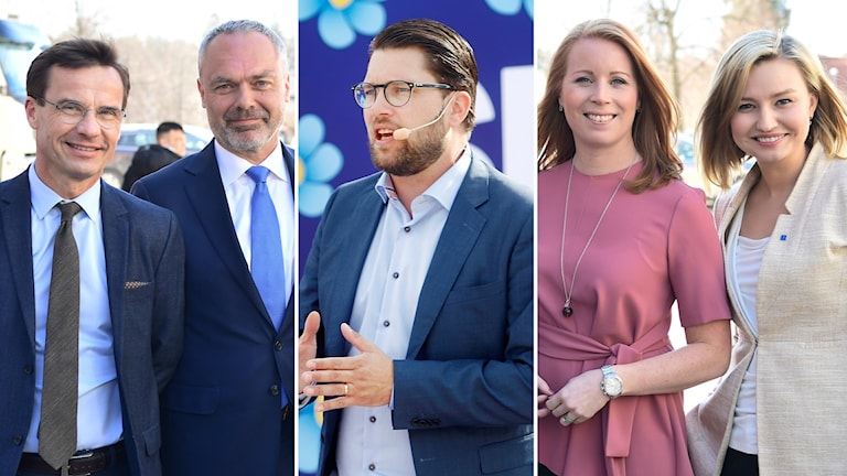 Split moderaternas väljare gillar sverigedemokraterna