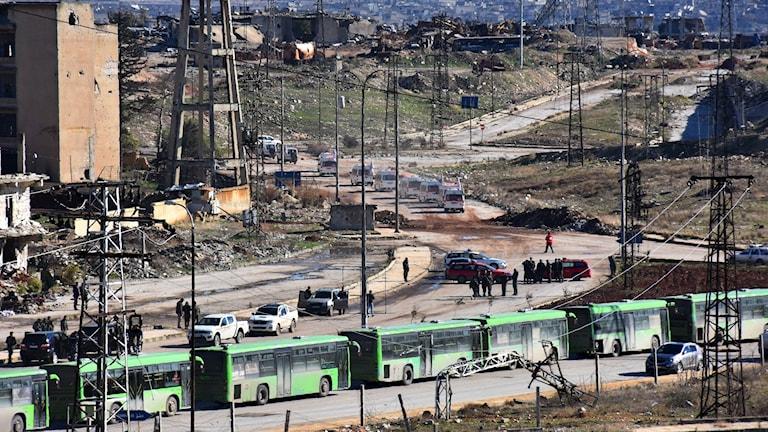 Bussar och ambulanser utanför östra Aleppo.