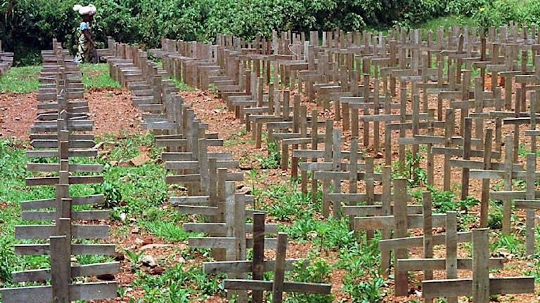 En kyrkogård med offer för folkmordet nära Kigali, Rwanda. Foto: Paul Chiasson/TT.