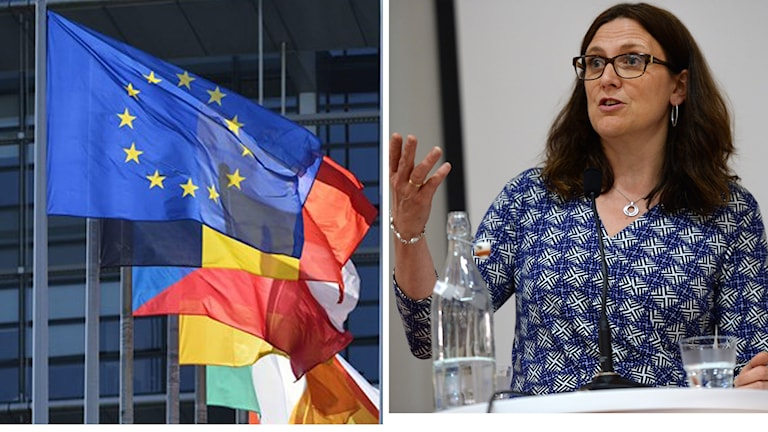EU flaggor, Cecilia Malmström. Foto: TT/Montage: SR.