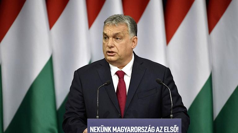 Bild på Viktor Orbán