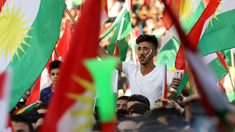 Kurdiska flaggor