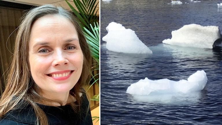 Tvådelad bild: Kvinna ler, isflak flyter i vatten.