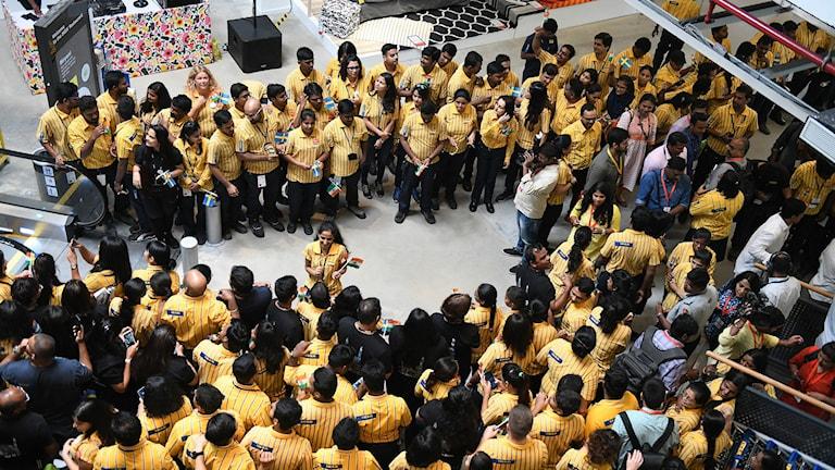 IKEA öppnar i Indien