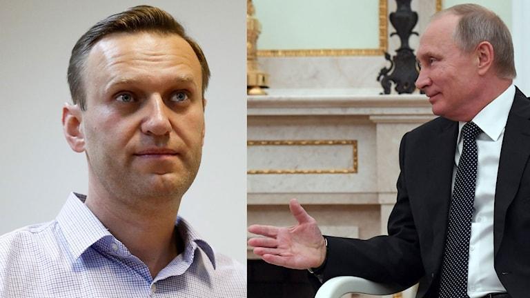 Alexsej Navalny och Vladimir Putinb