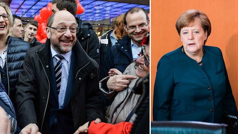 Delad bild: Martin Schulz och Angela Merkel.