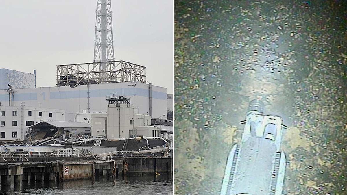 Bildkollage med kärnkraftverket i Fukushima och en undervattensrobot
