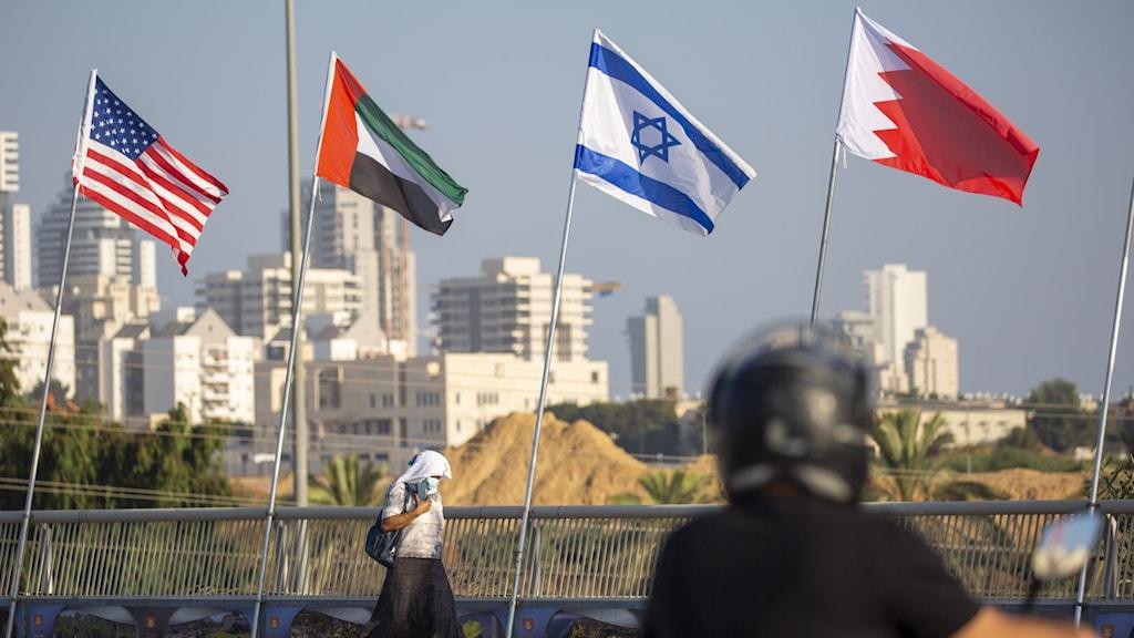 Den amerikanska, emiratiska, israeliska och bahrainska flaggan vajar i Israel inför den historiska fredsceremonin i Vita huset i USA.
