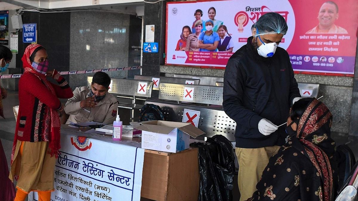 Folk testas för coronaviruset i Delhi, Indien.