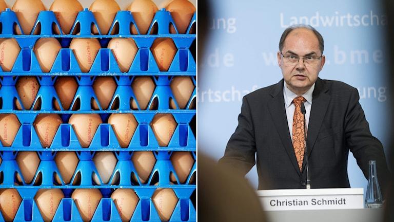 Ägg i förpackningar, tyska jordbruksministern vid ett podium