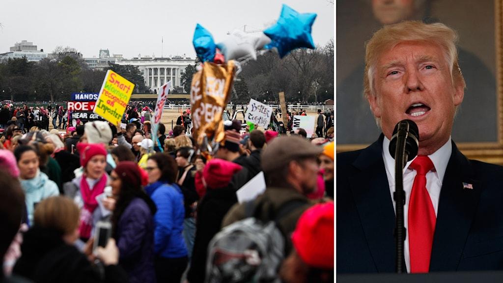 Bildkollage med människor som står med plakat framför kongressen in USA och med Donald Trump