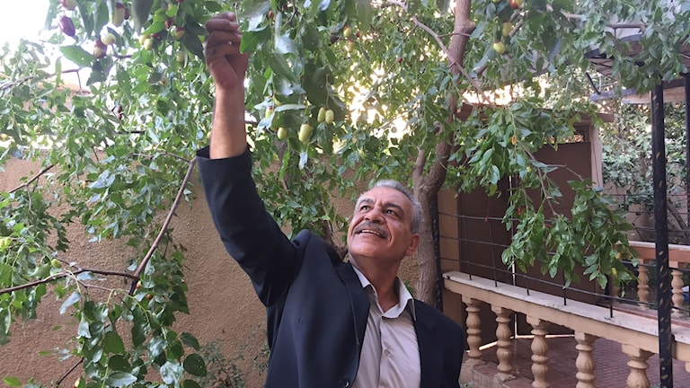 Yazid Hwaihi, Fatah-guvernör