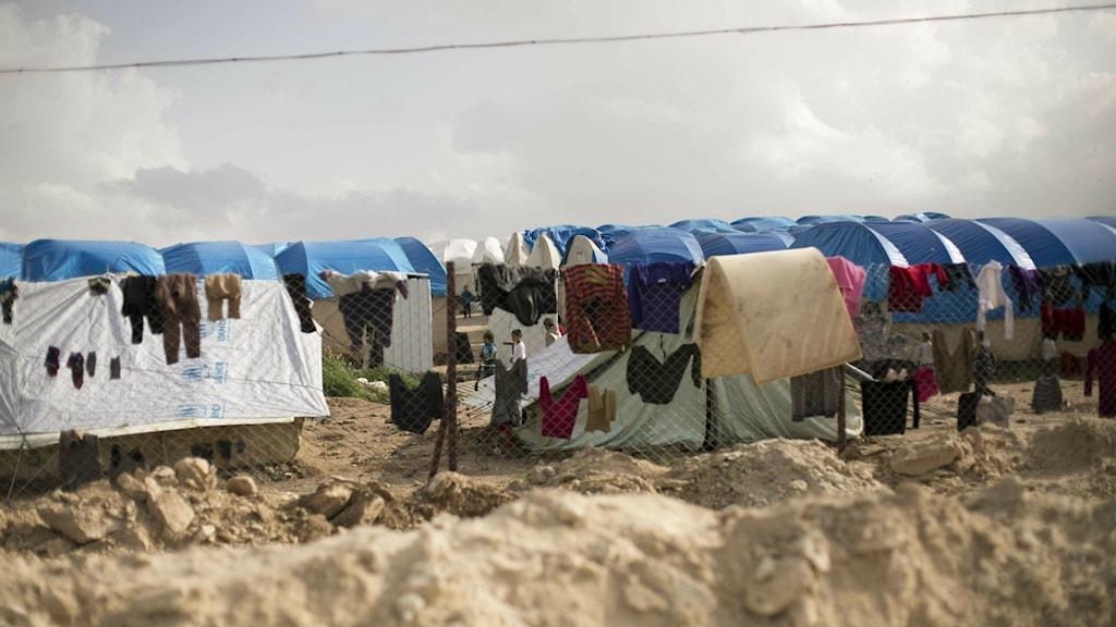 Kläder hänger på tork i utkanten av lägret Al-Hol i Syrien.