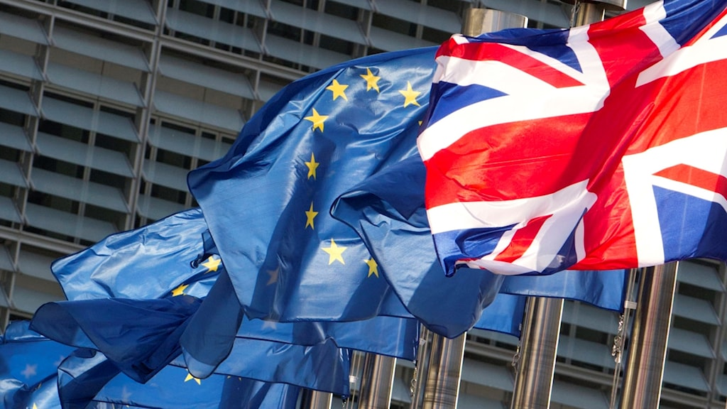 EU-flaggor och en brittisk flagga.