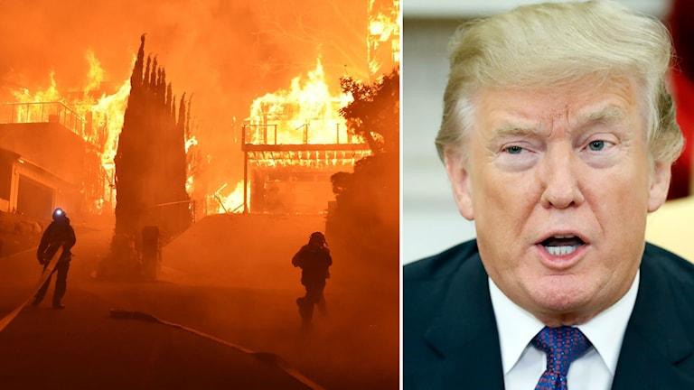 Donald Trump har utlyst katastroftillstånd i delstaten.