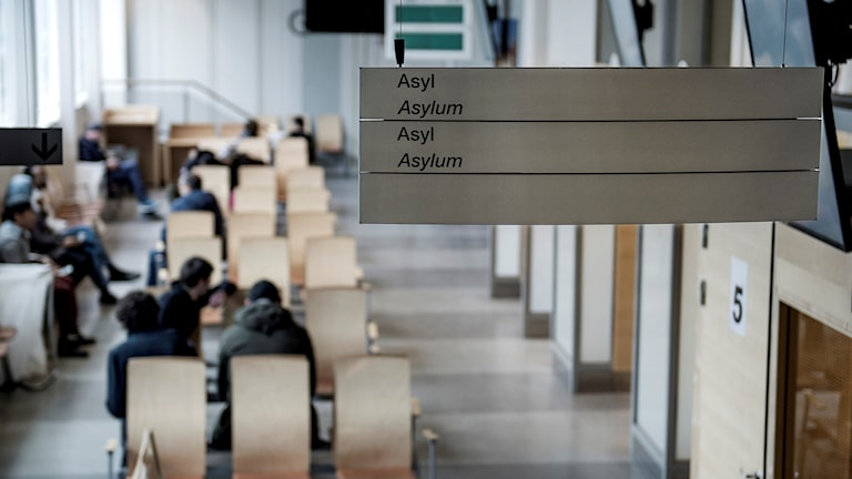 Väntrum på Migrationsverket. Skylt i taket som det står asyl på. Foto: Marcus Ericsson/TT