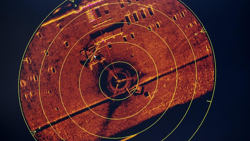 Sonarbild av Estonias vrak.
