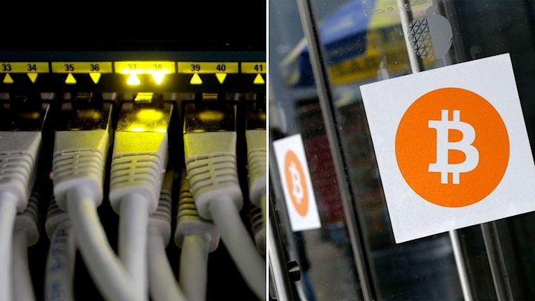 Nätverkskablar och en bild på Bitcoin-loggan.