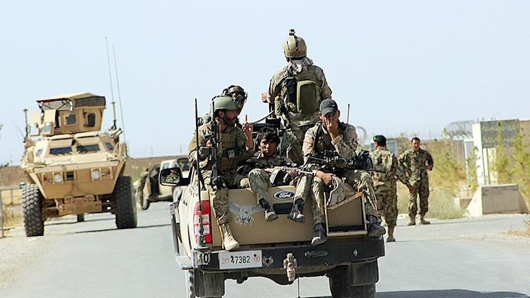 Afghanska regeringsstyrkor