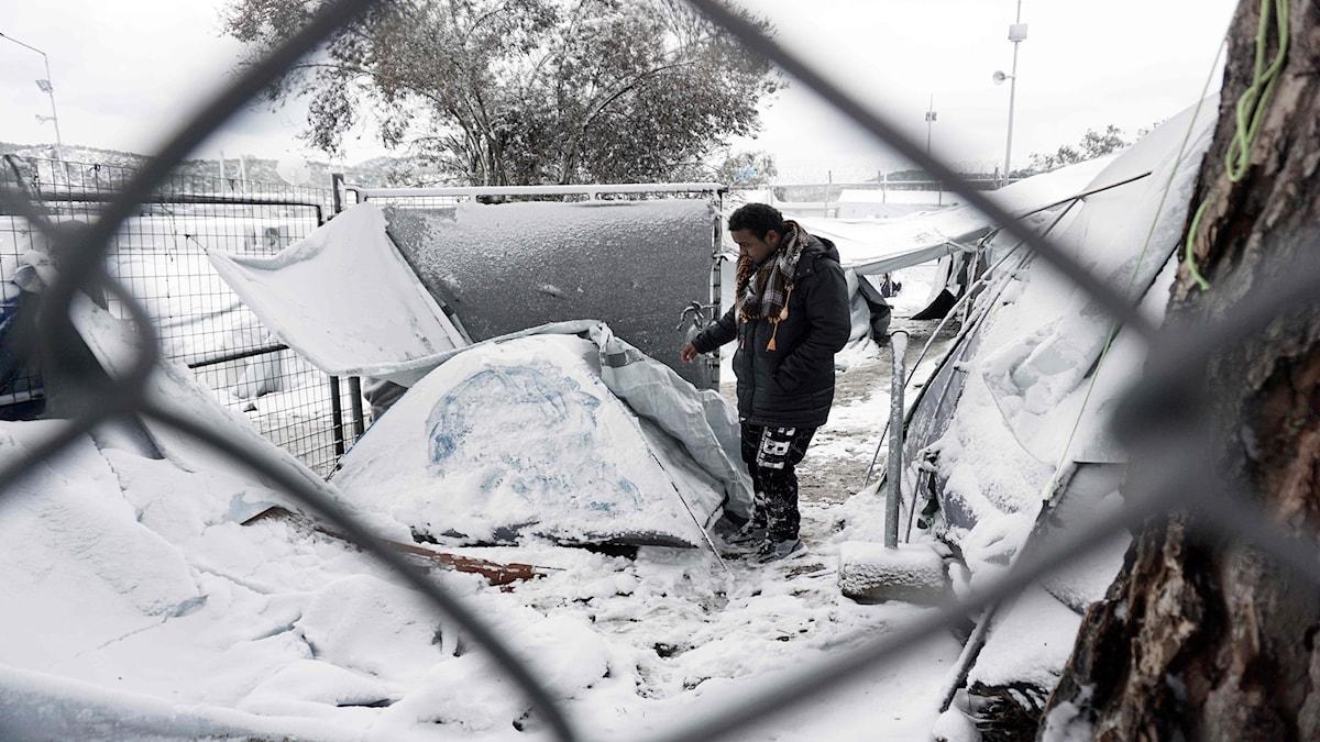 Flyktingläger på Lesbos i Grekland.