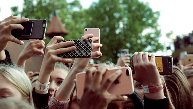 Ett publikhav där de flesta sträcker upp sina händer och håller i en smart telefon.