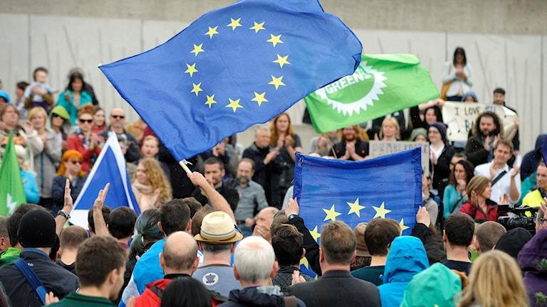 Folk viftar med flaggor.