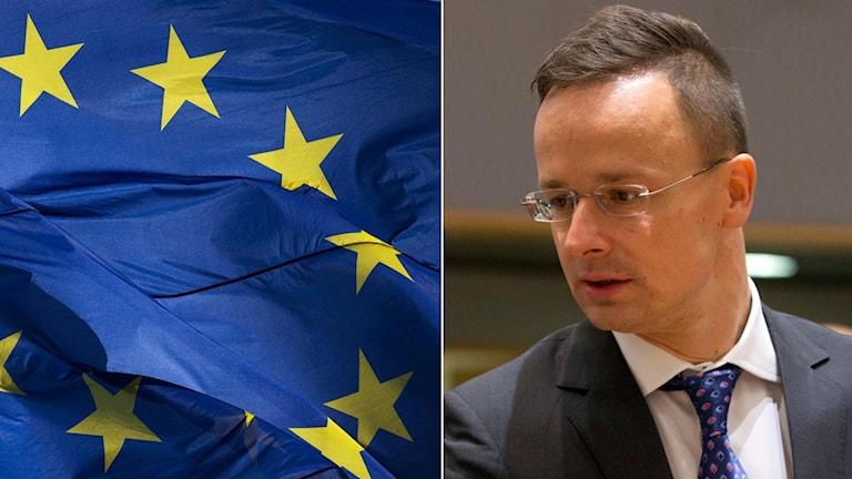 Ungerns utrikesminister Péter Szijjártó