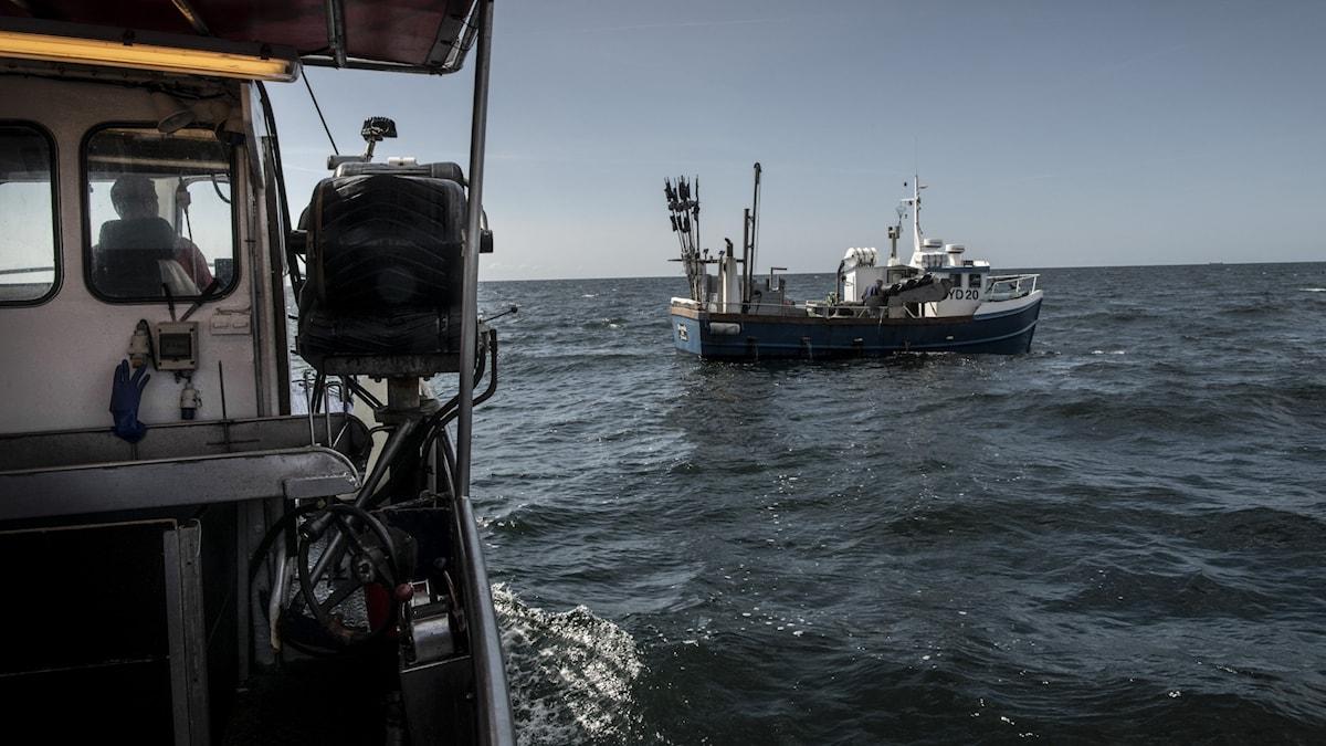 Fiskebåtar ute på havet