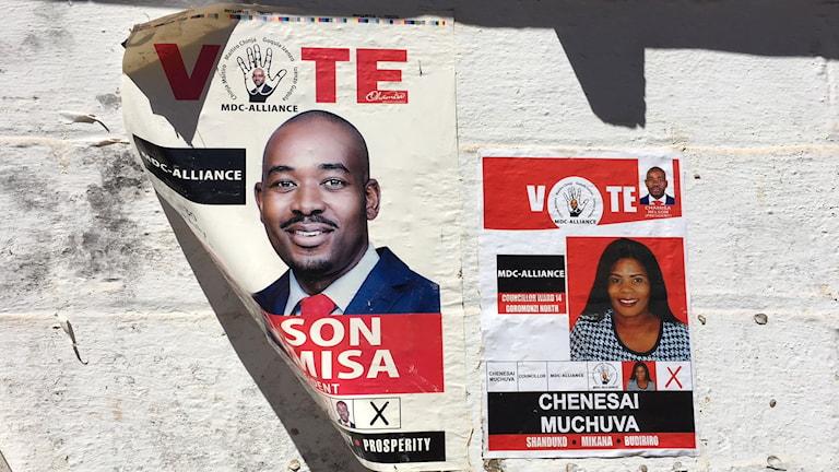 Valaffischer inför det historiska valet i Zimbabwe.