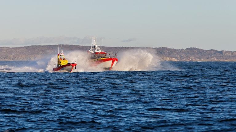 Två båtar från Sjöräddningssällskapet åker i vattnet och det yr vatten runt båtarna.