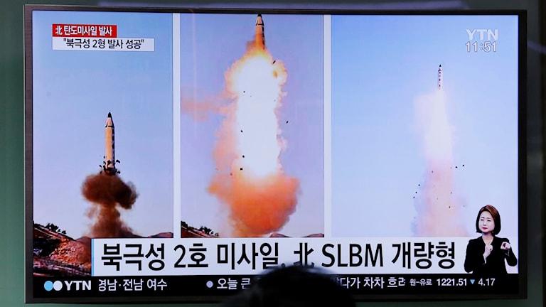 nordkorea robottest