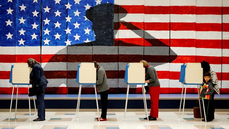 Valbås på rad framför en stor amerikansk flagga.